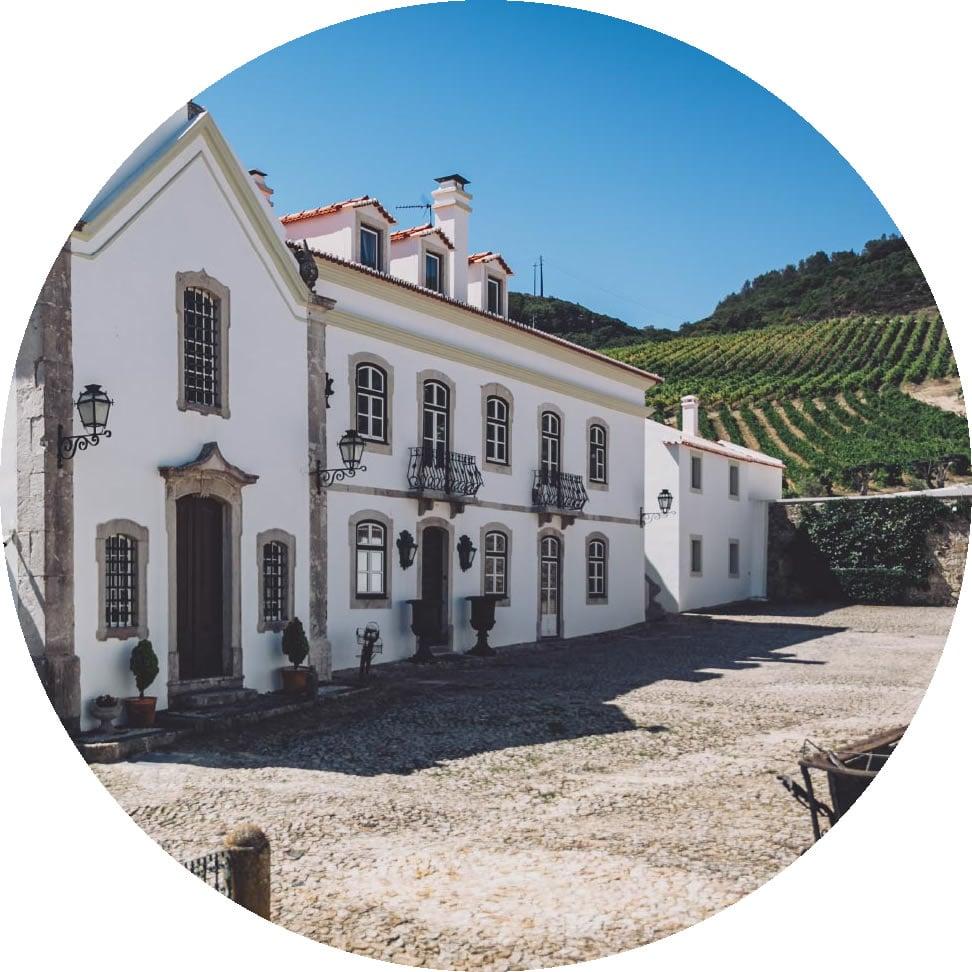 Vinhos da Quinta De São Sebastião: O renascer de uma região